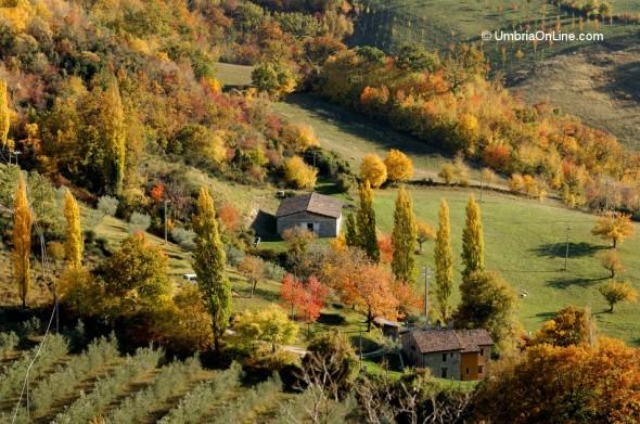 Le colline intorno ad Assisi in autunno