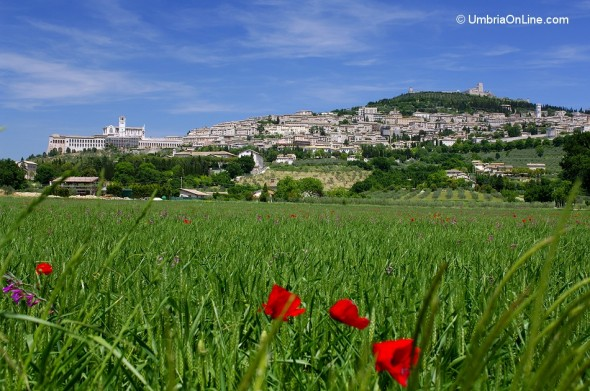 Vista di Assisi in primavera