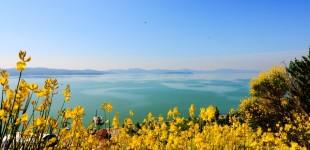 Lago Trasimeno - Panorama