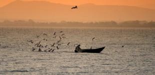 Lago Trasimeno - Pescatore in barca